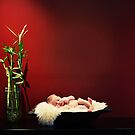 fine art newborn by Kristen  Byrne