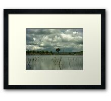 Wet Season Framed Print