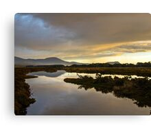 Marion Bay Wetlands Canvas Print