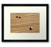 Hay Bales in Tuscany Framed Print