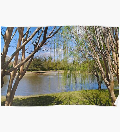 Weeping Willow Pond Poster