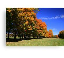 Fall On The Fairway! Canvas Print