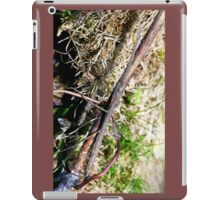 Stick insect Phasme story  3 paint   (c)(t) by Olao-Olavia / Okaio Créations fz 1000 iPad Case/Skin