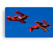 Bi bi-planes Canvas Print