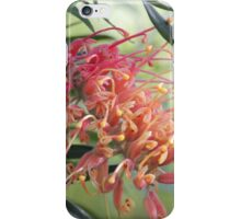 Grevillea Flower iPhone Case/Skin
