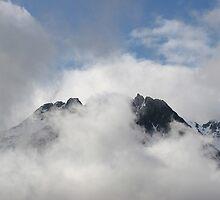 Sawtooth Mountains, Alaska by MichelleRhea