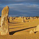 The Pinnacles- Western Australia by Ashley-Nicole
