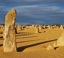 The Pinnacles- Western Australia by Ashley-Nicole