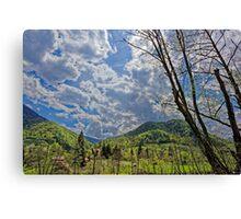 Countryside hills Rau Sadului Canvas Print