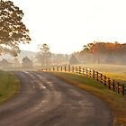 country road at sunrise by bettywiley