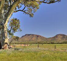 Flinders Ranges #1 by Terry Everson