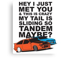 Tandem Maybe Canvas Print