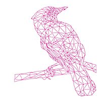 Neon Pink Bird Photographic Print