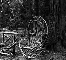 Forest Furniture by Jim Johnson