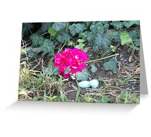 Cracked eggs Greeting Card
