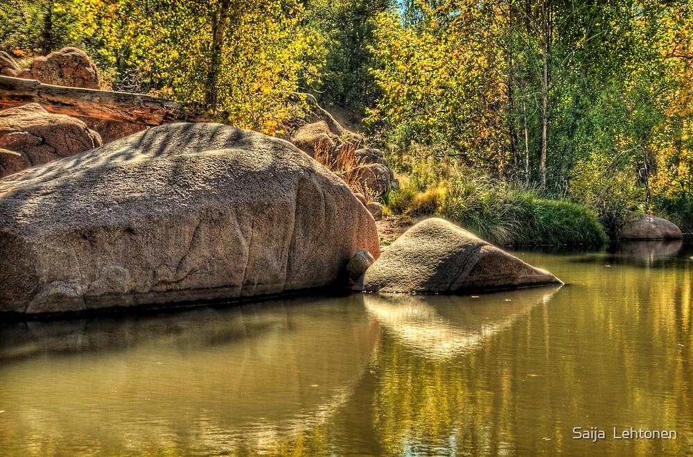 Autumn at the Creek by Saija  Lehtonen