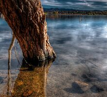 Stick in the Mud by Bob Larson