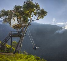 Swing at the edge of the world by Chris  Staring