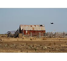 as the crow flys Photographic Print