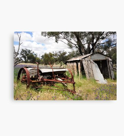 Old Shed Falling Down Canvas Print