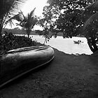 The River in Tortuguero by Sergey Kahn