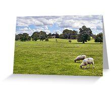 Peaceful Pastures Greeting Card