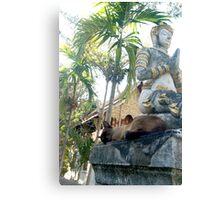 Siamese Cat Sleeps with Buddha Canvas Print
