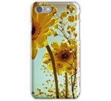 Sunshine Gerberas iPhone Case/Skin