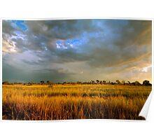 stormy paddock Poster
