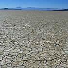 Cracked Earth - Alvord Desert, Harney County, OR by Rebel Kreklow