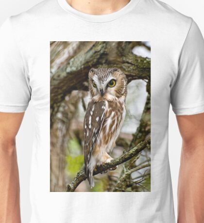 Northern Saw Whet Owl - Amherst  Island, Ontario Unisex T-Shirt