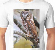 Northern Saw Whet Owl - Amherst Island, Ontario Unisex T-Shirt