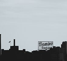 Domino Sugars by Bethany Helzer