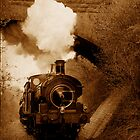 Steam train going under bridge, Shepton Mallet, Somerset, UK by buttonpresser