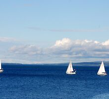 Sails on the blue Sea by Bertspix1