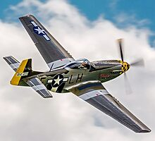 """P-51D Mustang G-MSTG """"Janie"""" by Colin Smedley"""