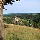 Good View by karina5