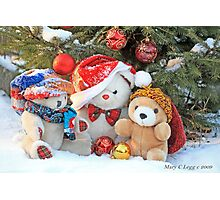 Three teddy bear friends  under the outdoor Christmas Tree Photographic Print