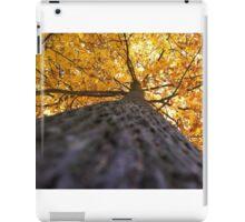 Autumn Below iPad Case/Skin