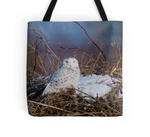 Snowy Owl on Hill Top - Amherst Island, Ontario Tote Bag
