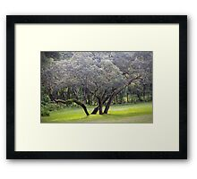 Wild Oak Framed Print