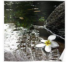 Floating stillness Poster