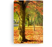 Golden Autumn Trees Metal Print
