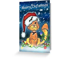 Christmas Card - Merry Christmas Cat Greeting Card