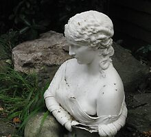 'Clytie' in the Garden by wanda1505