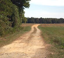 Country Lane - Pittsylvania County, VA by BCallahan