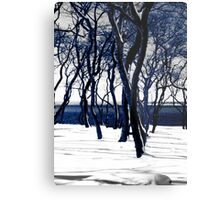 Trees in Snow Metal Print