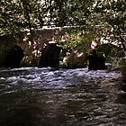 Pillaton Bridge by Country  Pursuits