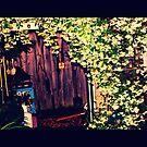 Winter Garden by Byzeee