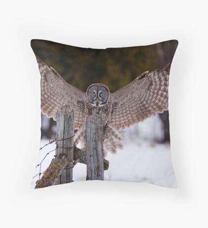 Great Grey Owl Throw Pillow